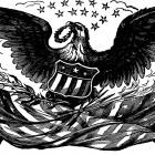 bald eagle and flags